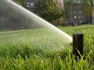beregening van een tuin met een automatische sproeier